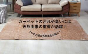 重曹はカーペット掃除にも便利!黒ずみ・シミ・臭いを取る方法を解説