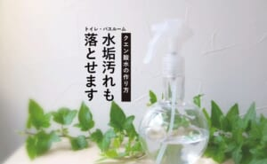 クエン酸水はナチュラル掃除に大活躍!落とせない汚れの解決策も