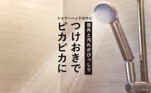 シャワーヘッドはカビ・水垢がびっしり!?汚れを根こそぎ退治する方法